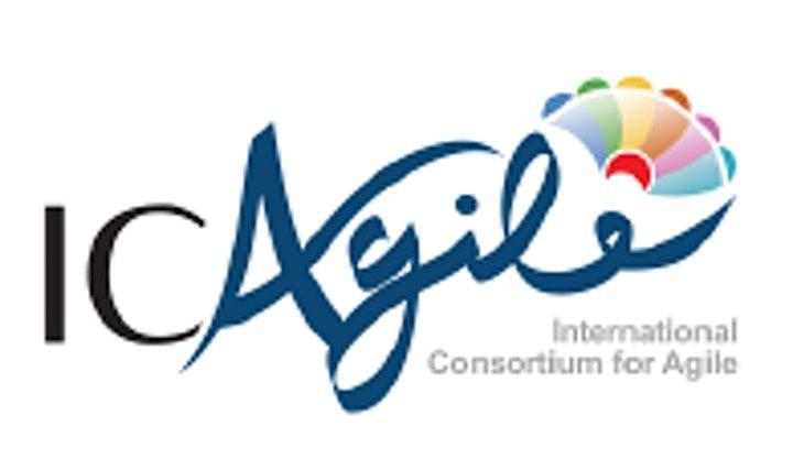 Agile Professional Foundation via Zoom image