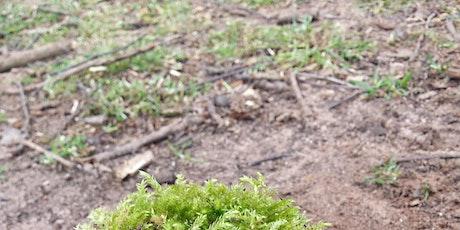 Mud Glorious Mud @ Hill Top Nuneaton tickets