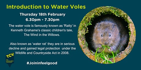 Introduction to Water Voles tickets