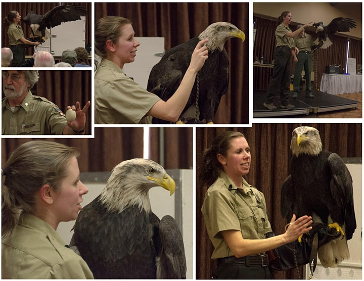 2021 Eagles in Flight Weekend image