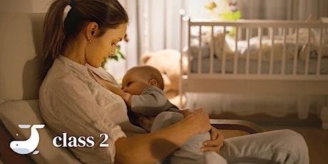 Online Class - Breastfeeding 101 tickets