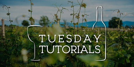 Tuesday Tutorials: Natural and Organic Wines - 6th July 2021 6.30pm tickets