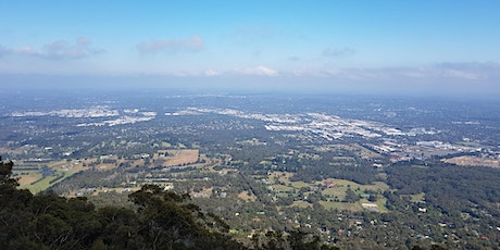 Mt Dandenong to Sky High - 18km return hike on the 30th of Jan, 2021 tickets