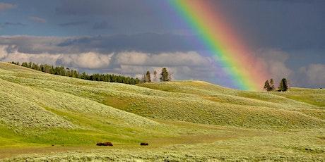 TEATRO NEL LETTONE:  In fondo all'arcobaleno tickets