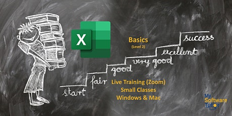 Excel Basics Live tickets