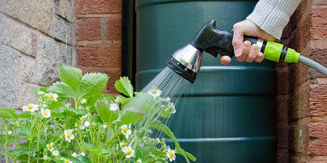 How to save water in your garden - webinar tickets