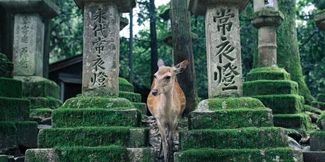 Japan - Virtual Nara Walking Tour tickets