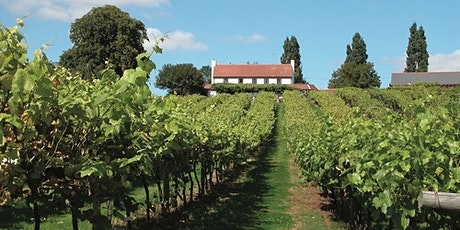Drinks Industry:  Three Choirs Vineyards tickets