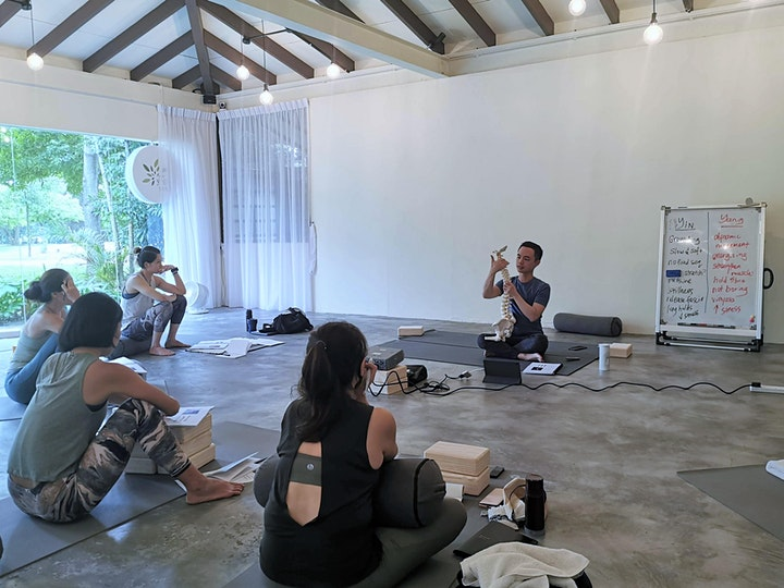 Yin Yoga and Anatomy 50hr Teacher Training image