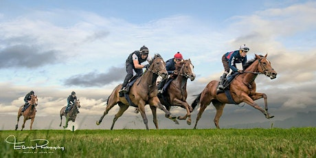 Racehorse Photography Workshop tickets