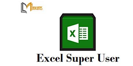 Excel Super User  1 Day Virtual Live Training in Christchurch biglietti