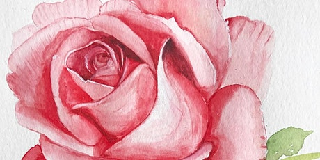 Roses in Still Life with Carolyn DiFiori-Hopkins tickets