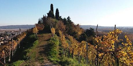 Passeggiata a Vidor tra vigne e santuari biglietti