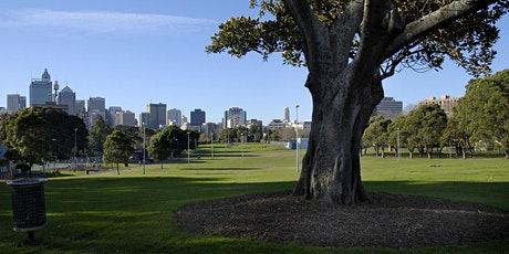 45min Outdoor Yoga Class (Prince Alfred Park) tickets