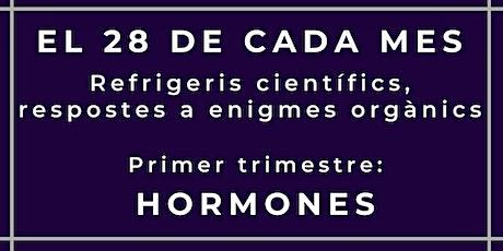 El 28 de cada mes: L'enigma de les hormones entradas