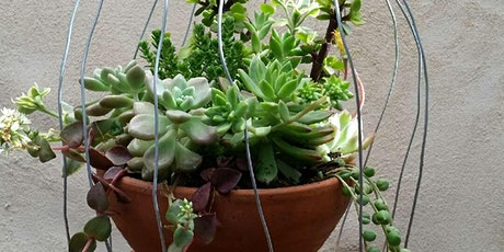 Succulent Bird Cage Workshops at Sophie's Patch tickets