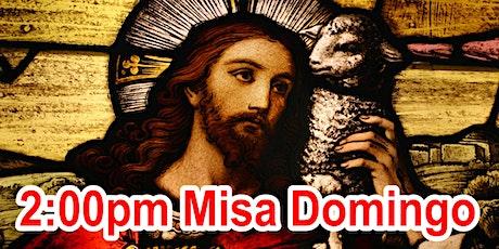 2:00pm Misa Dominical  (ESTACIONAMIENTO DE LA ESCUELA) tickets