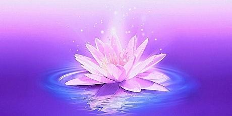 28 Day Moon Meditation Challenge tickets