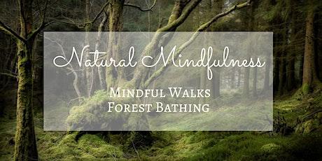Forest Bathing Wellness Walk tickets