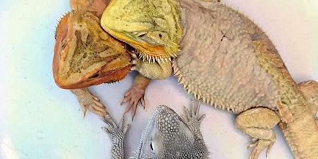 Show Me Reptile & Exotics Show (Kansas City) tickets