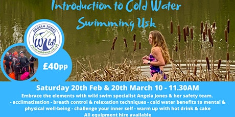 Introduction to Cold Water Swimming (Usk) tickets