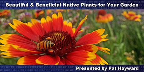 Beautiful & Beneficial Native Plants for Your Garden tickets