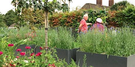 LI London: London's Roof Gardens Debate tickets