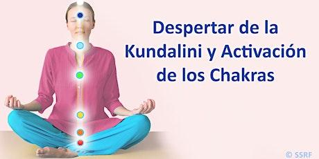 Despertar de la Kundalini y Activación de los Chakras tickets