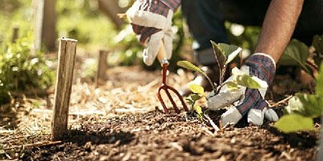 Introduction to Horticulture: Health & safety in the workplace tickets