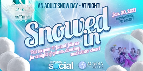 Snowed In - An Adult Snow Day (At Night) tickets