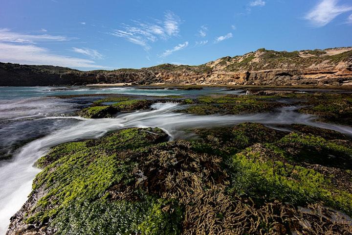 FULL DAY Mornington Peninsula Coastal Landscape Photography Master Class image