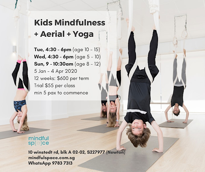 Weekly Kids Mindfulness + Aerial + Yoga image