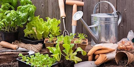 NIRWN's Create a Mini Indoor Garden using Houseplants (Indoor Planter) WS tickets