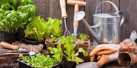 NIRWN's Container Gardening for Seasonal Interest  (Outdoor Planter) WS tickets