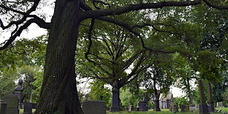 The Thousand Year Wood: Humans and Trees Growing Together tickets