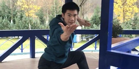 Sincere  Kung Fu Online Class - learn the basics of  Animal Fists tickets