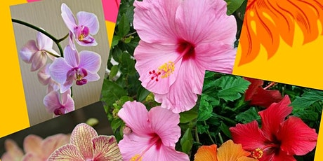 Acrylic Painting - Tropical Flowers with Kelly Maw, Morning tickets