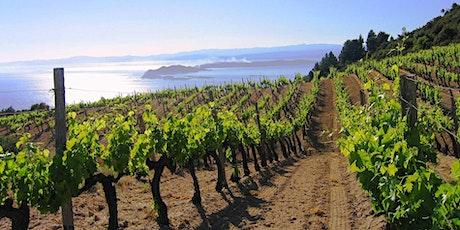 The Wine Diva: Wines of Greece tickets