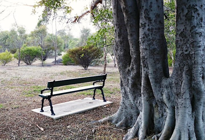 Guided Walk through North Adelaide's Parks 3, 4 and 5 image