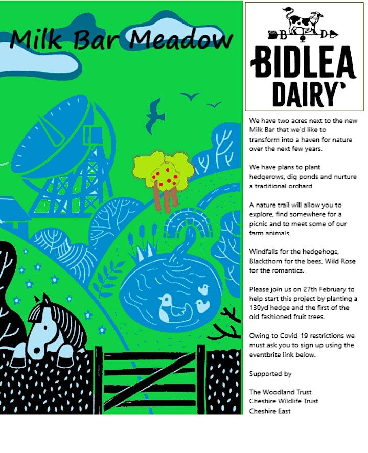Milk Bar Wildlife Meadow at Bidlea Dairy image