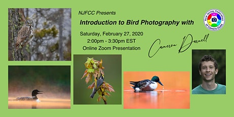 NJFCC Presentation - Introduction to Bird Photography with Cameron Darnell tickets