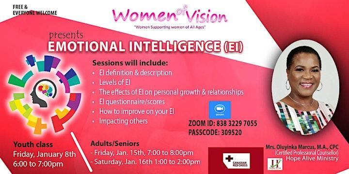 Adult - Emotional Intelligence (EI) image