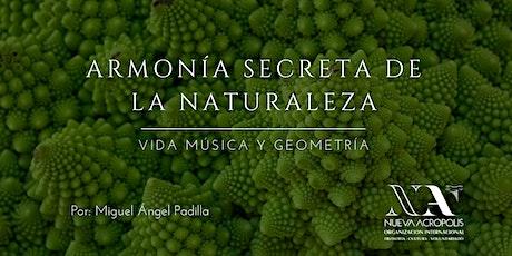Charla Online: Armonía Secreta de la Naturaleza. Vida, música y geometría entradas