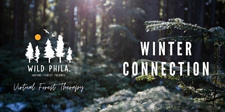 """Winter Connection   Virtual """"Forest Bathing"""" Sessions tickets"""