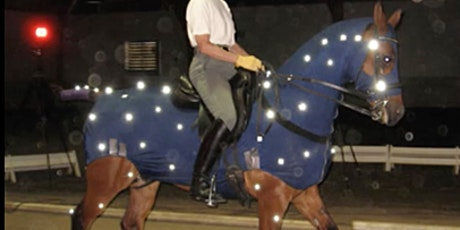 The Locomotor Apparatus of the Horse: from a Biomechanical Perspective tickets