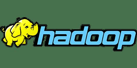 4 Weeks Only Big Data Hadoop Training Course in Half Moon Bay tickets