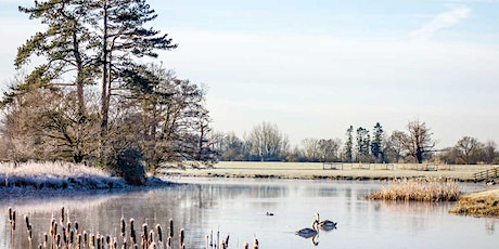 Timed entry to Croome (11 Jan - 17 Jan) tickets