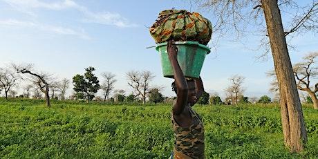 L'économie africaine en 2021 : résiliente et inspirante billets