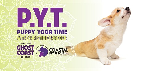 PYT: Puppy Yoga Time tickets