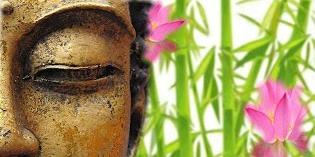 6 Week OnLine Meditation Course tickets